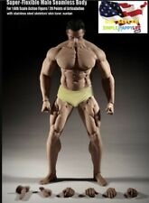 NEW TBLeague Phicen M35 1/6 scale Male Seamless Super Muscular Body ❶USA❶
