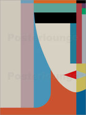 Poster / Toile / Tableau verre acrylique ABSOLUTE FACE - THE USUAL DESIGNERS