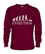 JACK RUSSELL TERRIER EVOLUTION OF MAN UNISEX SWEATER MENS WOMENS LADIES DOG GIFT