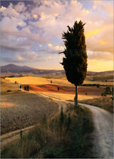 Póster, lienzo o cuadro en metacrilato Sunset over Val d'Orcia... - M. Colombo