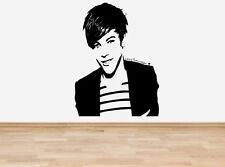 Louis Tomlinson One Direction vinyl wall art sticker - 16 colours - FMS15