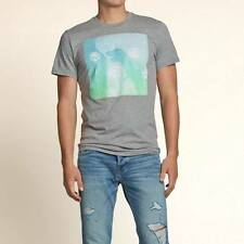 HOLLISTER Trestles Beach T-Shirt imported from USA