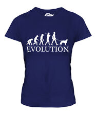 IRISH SETTER EVOLUTION OF MAN LADIES T-SHIRT TOP DOG LOVER GIFT WALKER WALKING
