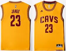 A61198 CANOTTA BASKET NBA CLEVELAND JAMES 23.