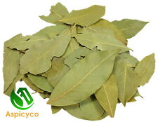 Bay Leaves/ Tej Patta - Dried Whole Premium Quality Curry Spices