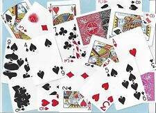 2 CARTE SPECIALI BICYCLE GAFF - Giochi di prestigio Magia Card Magic Trick
