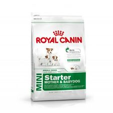 Crocchette per Cani in Allattamento e Cuccioli Royal Canin Mini Starter Mother