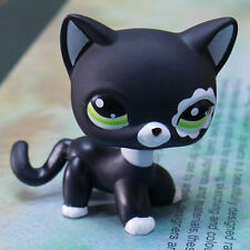 BLACK CAT LITTLEST PET SHOP LPS COLLECTION Action Figure gift RARE #2249 TOY 2