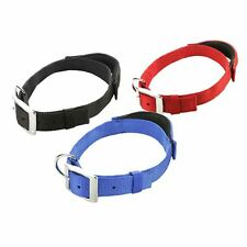 Pet Dog Puppy Collar Elastic Padded Handle Safety Leash Reflective Stitching