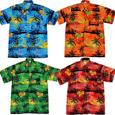 Hawaiian Shirt Holiday Festival Stag Party Beach Fancy Dress costume floral