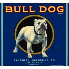 BULL DOG VINTAGE CRATE OR CAN LABEL POSTER