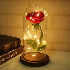 Enchanted Rose that Lasts Forever in Glass Dome Beauty and the Beast Rose Dome,