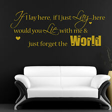 IF I JUST LAY HERE- SNOW PATROL Lyrics, Wall Art Vinyl Sticker Decal