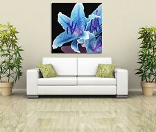 Stylish blue lily flower close up PHOTO WALL ART PICTURE CANVAS PRINT DECOR