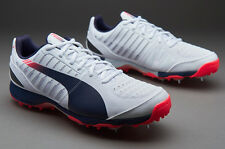Puma evoSpeed Cricket Spikes 1.3 - White/ Peacoat/ Bright Plasma