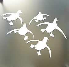 Ducks Landing Decals