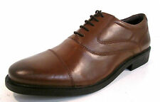 Uomo Hush Puppies Rockford OXFORD PELLE MARRONE Scarpe con lacci