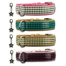 SIMILPELLE COLLARE PER CANE COCO ´s Choice in pelle