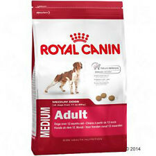 Dog Food Royal Canin Medium Adult - for a strong immune system