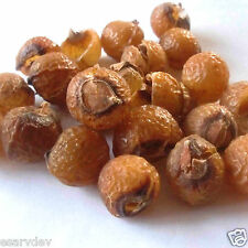 Reetha – Aritha – Areetha (Seedless) – Soapnuts 200gm. 500gm. 1kg. for Hair care