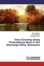 Trees Growing along Thamalakane River in the Okavango Delta, Botswana Demel ...
