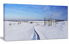 'Hautes Fagnes in Belgium Panorama' Photographic Print on Wrapped Canvas