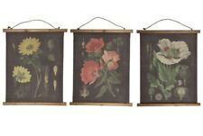 BOTANICAL ILLUSTRATIONS WALL HANGING CANVAS FLOWERS GARDENING WALL ART VINTAGE