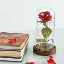 Beauty and the Beast Red Rose in a Glass Dome with LED Light Wooden Base Gift