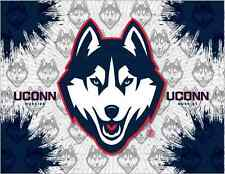 Connecticut Huskies HBS Gray Navy Wall Canvas Art Picture Print
