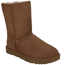 Womens Ugg Australia Classic Short 11 Boots In Chestnut From Get The Label