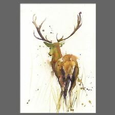 JEN BUCKLEY signed LIMITED EDITON PRINT of original Stag watercolour