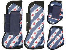 Harry's Horse Gamaschen-Set Friesian Hartschale Neopren 4er Set Friesen-Motiv