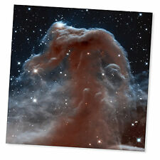 Horsehead Nebula Space Poster Hubble Astronomy High Quality Print Picture