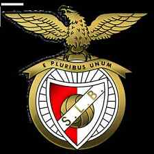 Parche imprimido /Iron on patch,Back patch,Espaldera,Pegatina/ - Benfica
