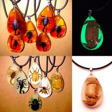 Real Insects Bugs In Resin Amber Glow In The Dark Necklace Pendant Exotic