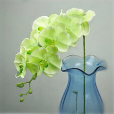 Artificial Floral 12 Head Orchid Phalaenopsis Flower Home Garden Decor CHOOSE