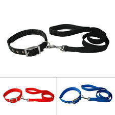 Soft Padded Nylon Pet Dog Collar and Lead Leash Durable for Small Medium Dogs