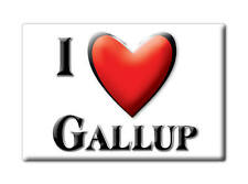 SOUVENIR USA - NEW MEXICO FRIDGE MAGNET I LOVE GALLUP (MCKINLEY COUNTY)