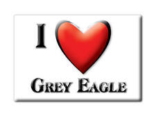 SOUVENIR USA - MINNESOTA FRIDGE MAGNET AMERICA I LOVE GREY EAGLE (TODD COUNTY)
