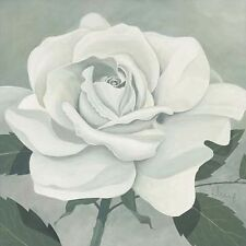 Franz Heigl : rose One Toile sur cadre toile fleurs roses