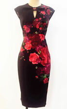 BNWT 2016 Ted Baker Mirrie Juxtapose Rose Dress  RRP £169