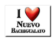 MEXICO SOUVENIR FRIDGE MAGNET IMAN DE NEVERA I LOVE NUEVO BACHIGUALATO