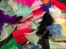 50x Mixed Feathers Pack Embellishment Arts Card Wedding Craft Cake Burlesque