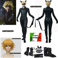 Simile Miraculous Chat Noir Costume Carnevale Ladybug Cosplay Costume CHAN06