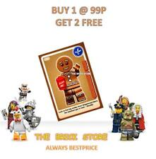BESTPRICE NEW GIFT SKIER CREATE THE WORLD TRADING CARD LEGO #047