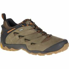 Merrell Chameleon 7 Gtx Hommes Chaussures - Dusty Olive Toutes Tailles