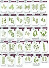 Sue Wilson Finishing Touches Dies Collection - Grass, Leaves, Fern, Ivy, Vinery