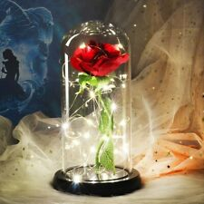 Beauty And Beast LED Rose Flower Light Black Base Glass Dome Best For Mother's