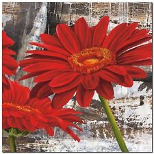 Quadro Jenny Thomlinson 'Red Gerberas II'  Stampa su Tela Canvas
