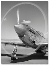 Quadro Gordon Osmundson 'Spinning propeller' Stampa su Tela Canvas